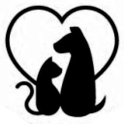 Mascotas - veterinarias